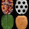 yaprak şekilli klozet kapak, şık kapak modeli, klozet kapak örnekleri