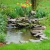 Yeni Süs Havuzu